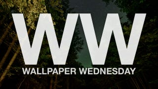 Take a Walk Through the Forest with These Wallpapers