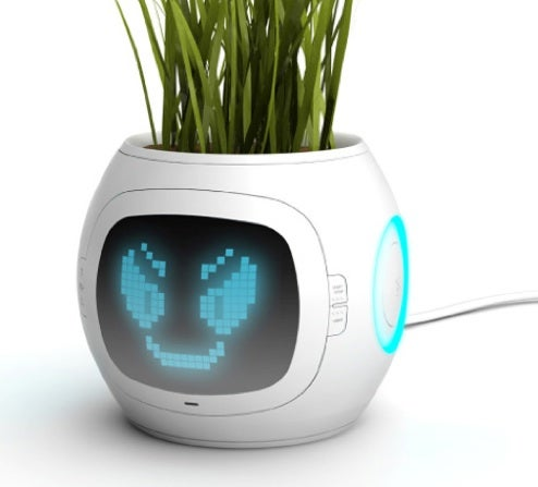 Digital Pot Lets Plants Tell You Their Demands
