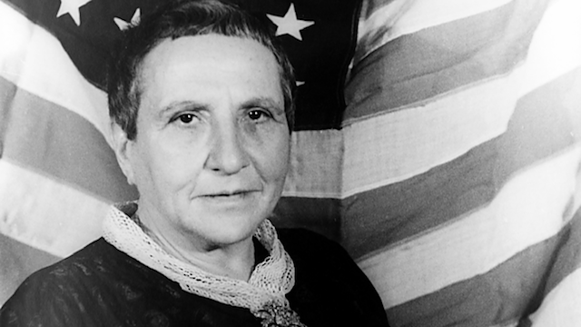 The Night Belongs to Gertrude Stein