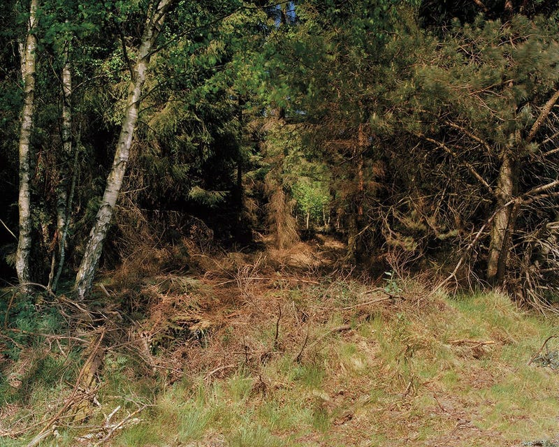 See If You Can Spot The Camouflaged Snipers In These Pictures