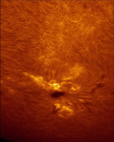 Solar Eruptions Captured By DiY Astronomer