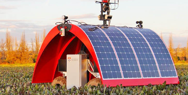 A Solar-Powered Ladybug That Might Just Save Global Agriculture