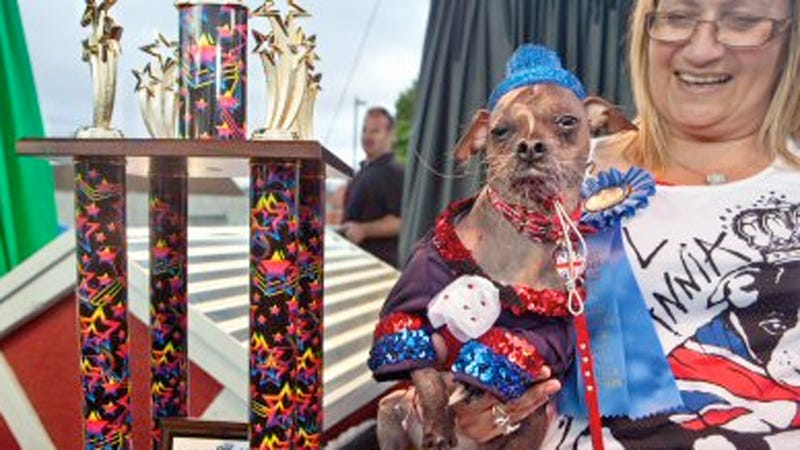 Dogs Uglier This Year: Mugly Replaces Yoda As 2012's World's Ugliest Dog