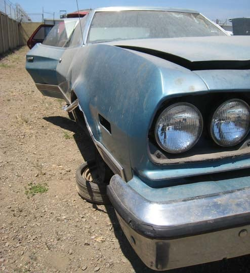 Junked 1974 Ford Gran Torino: You're Out Of Your Element!