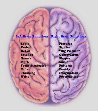 Nine Stubborn Brain Myths That Just Won't Die, Debunked by Science