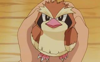Pidgey! Pokemon One a Day!