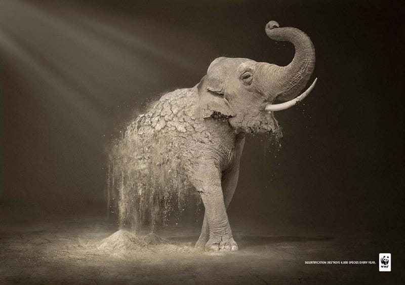 These Ad Campaigns Are Painful To Behold, And That's The Point