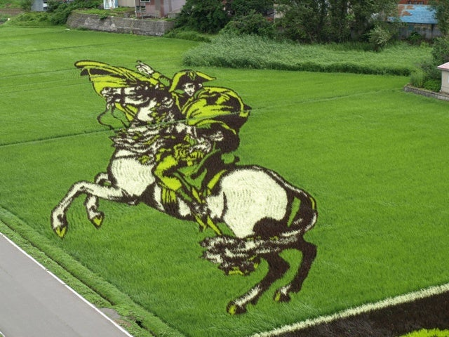 Japan's Amazing Rice Paddy Art Continues to Dazzle