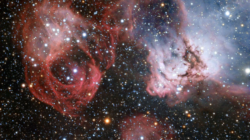 The birth and death of stars in one spectacular photo