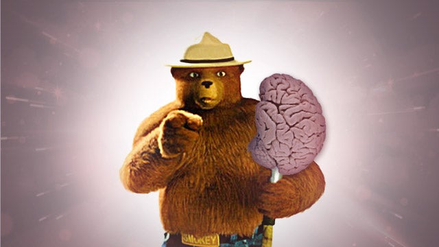 Only You Can Prevent Brain Abuse