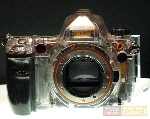 Sony's Next Gen Alpha A900 DSLR: 25 Megapixels, Due By September
