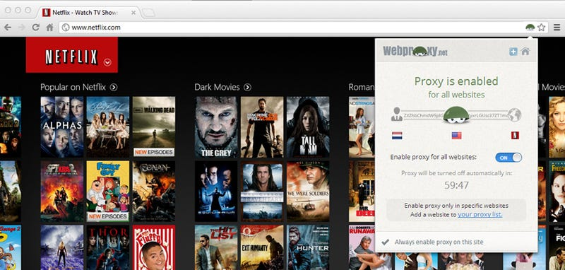 Webproxy unblocks Netflix,Youtube, Facebook, and More Regardless of Region or content