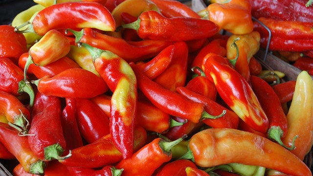 Rub Your Hands with Vegetable Oil Prior to Cutting Chiles to Avoid the Burn