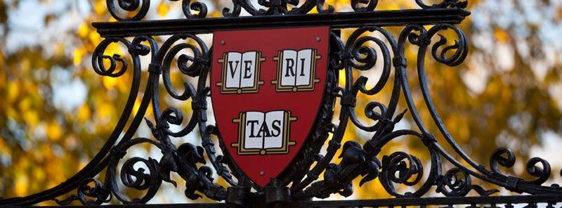 Harvard Is So Rich