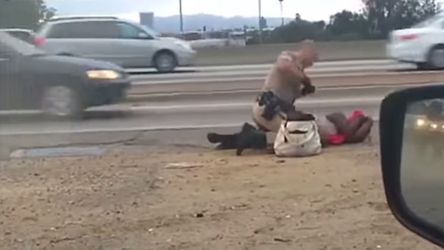 Cop in Brutal Roadside Beating Could Face Felony Charges
