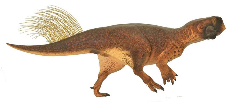 Fossil Reconstruction Shows How Dinosaurs Used Camouflage to Evade Prey