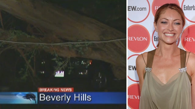 Celebrity's Wife Fine as Dangerous Winds Blow Through L.A.