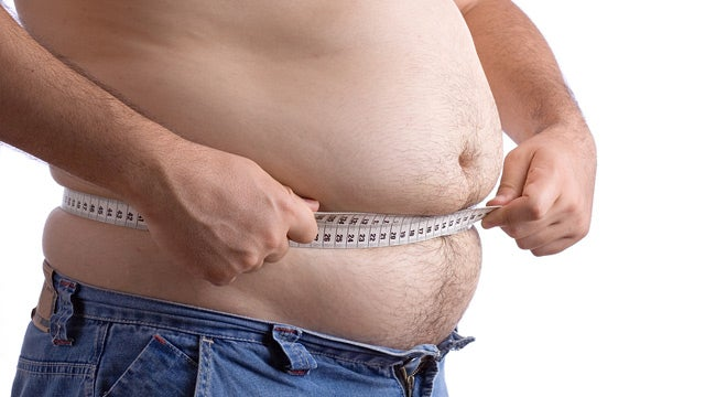 Scientists Discover An Obesity 'Master Switch'