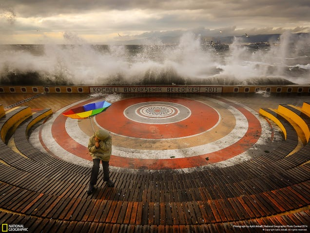 The bestNational Geographic readers' photos of 2014