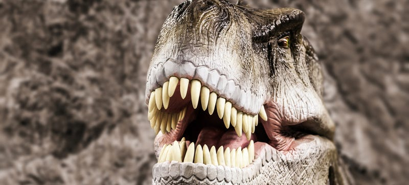 Jurassic Park Lied to You: T-Rex Had Great Eyesight Really