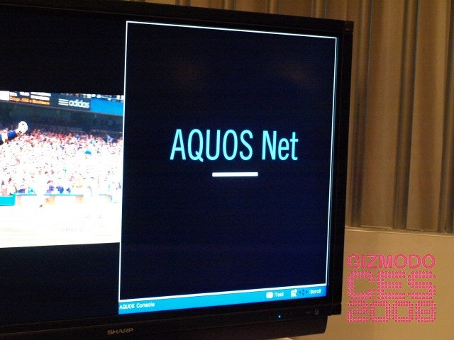 So What the $*@% Is Aquos Net?