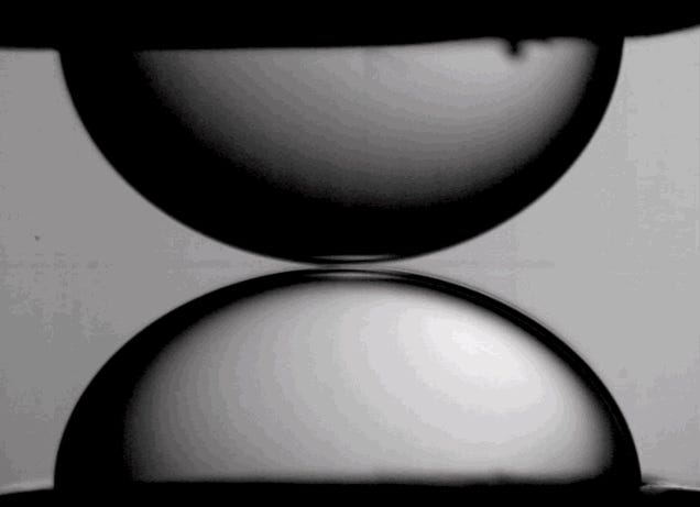 Your Afternoon Catharsis: Liquid Droplets Coalescing in Slow Motion
