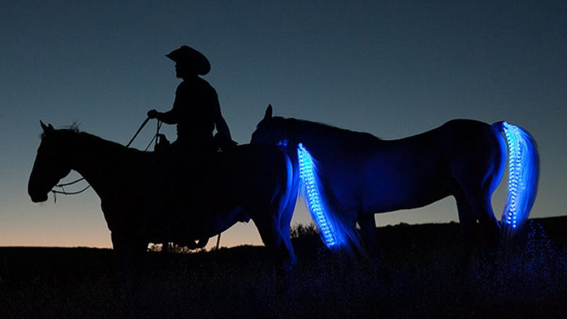 Turn A Horse Into A Tron Motorcycle With Neons... For Safety!