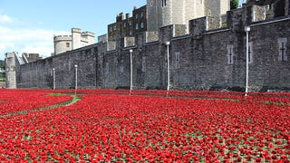 888,246 Ceramic Poppies Will Fill The Moat At The Tower Of London