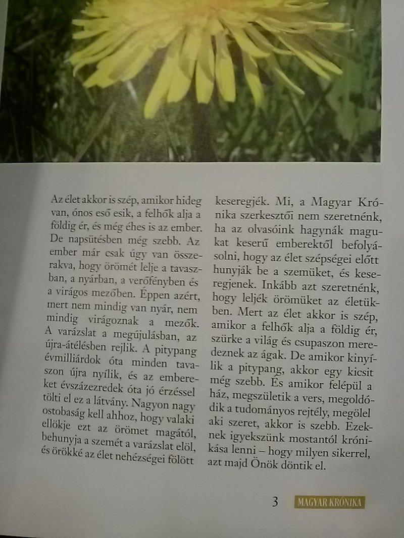 És tényleg pitypanggal indult útjára a Kerényi-féle Magyar Krónika!