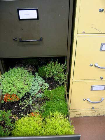 Turn a Filing Cabinet into a Rolling Container Garden