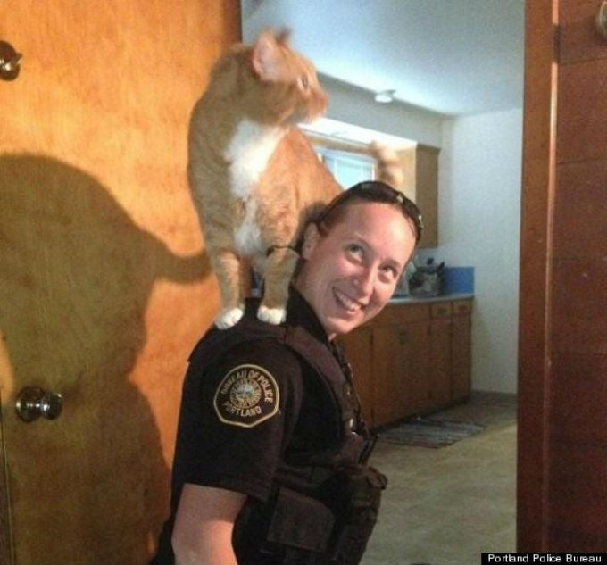 Hero Cop Carries Cat to Safety On Her Shoulders