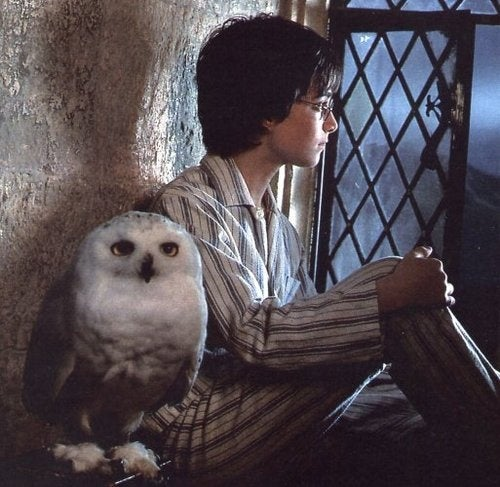 A brief video history of owls in science fiction and fantasy