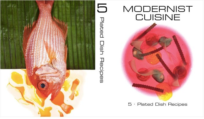 The Long Wait for the Iliad of Modern Cooking, Modernist Cuisine