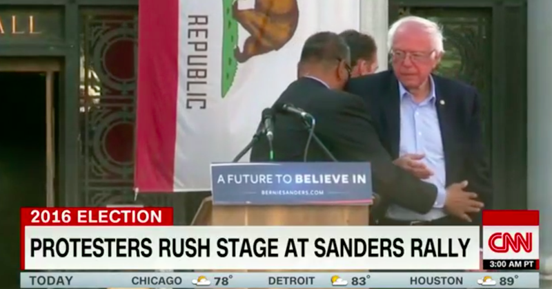 Animal Rights Protestors Storm Sanders Rally Over Literally Least Important Election Issue