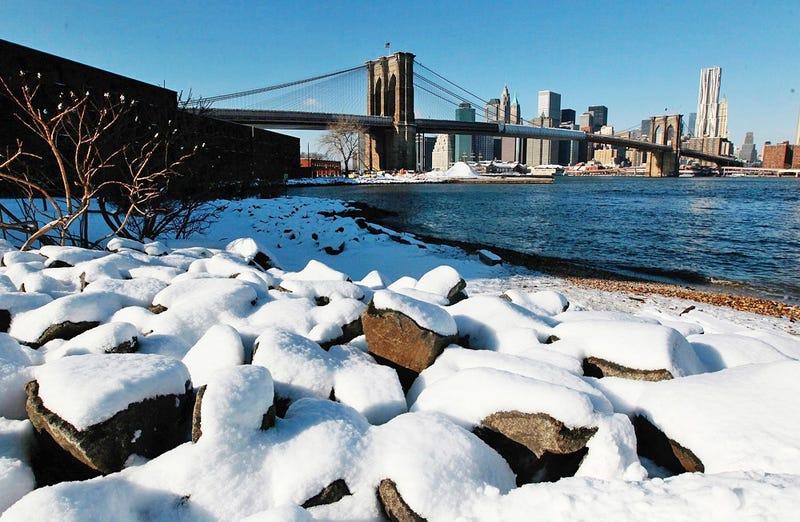 A Tree, Snows in Brooklyn