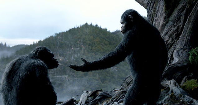 How Dawn of the Planet of the Apes Made Overgrown Future Woods in Canada