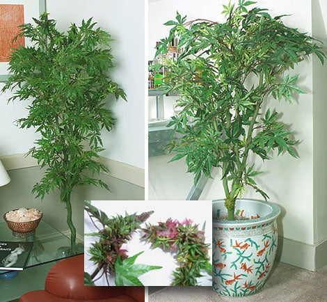 Fake Pot Plants: There Goes the Neighborhood