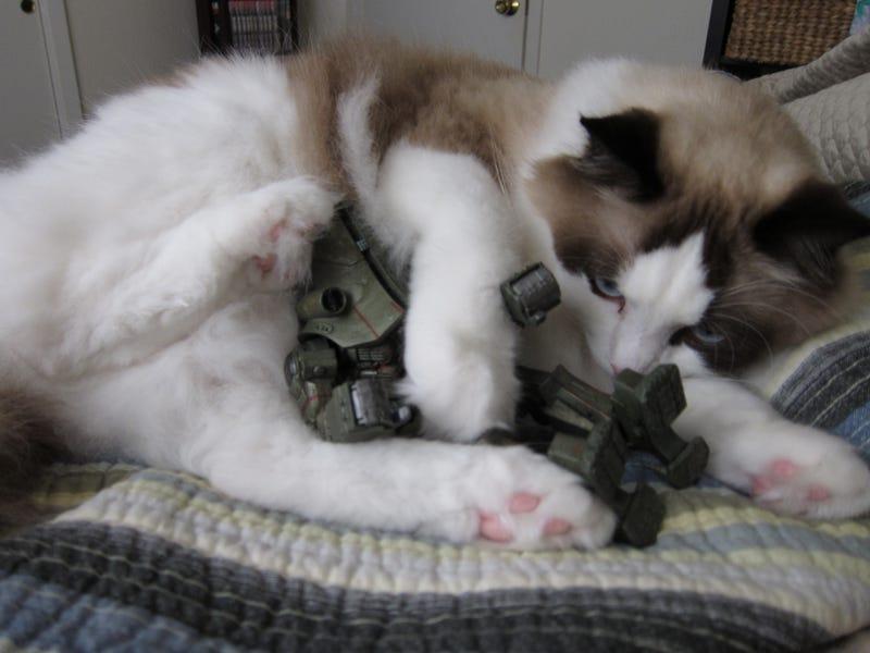 Fluffy Kaiju Attack