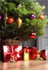 Photo tips for Christmas