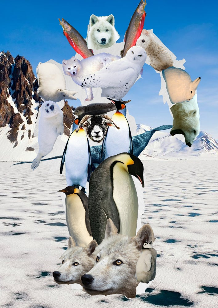 Polar Voltron