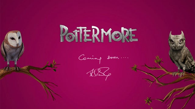 Pottermore Beta Encourages Wand-Play With Minors