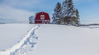 Shooting Challenge: Snowy Scenes