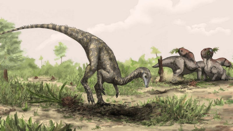The Oldest Dinosaur Ever Found Spent the Last 50 Years in a Storage Closest