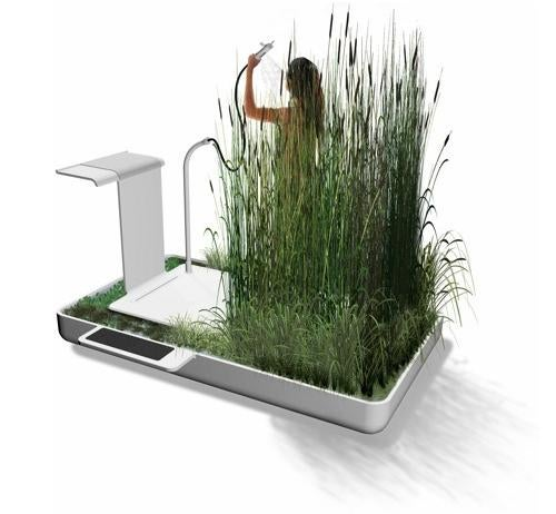 Wash Away Gray Water With An In-Bathroom Wetland Ecosystem