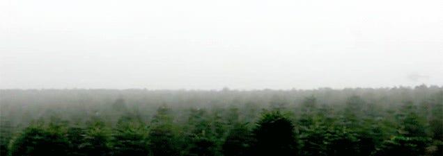 Insane helicopter pilot harvesting Christmas trees