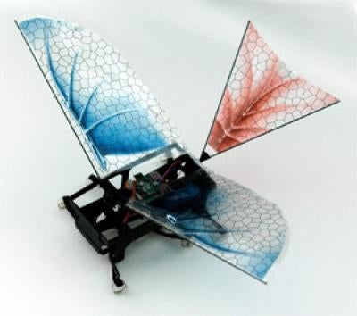 Winged robot hints at the evolution of flight