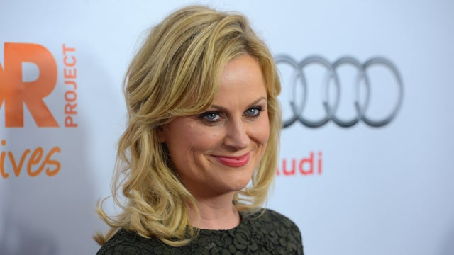 Amy Poehler is Writing a Book That Sounds Absolutely Crazy