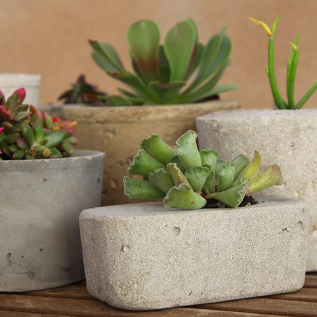 How to make a cool concrete planter of your own for Make your own cement