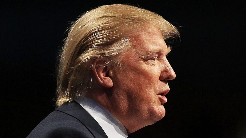 How on Earth Are We Going to Fix Donald Trump's Hair?