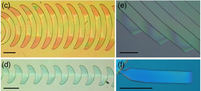 This High-Tech Silicate Film Cracks in the Weirdest and Prettiest Ways